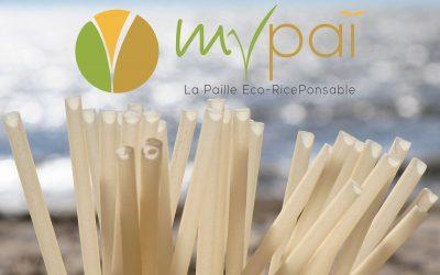 Création de la charte graphique complète de MyPaï, la paille Eco-RicePonsable